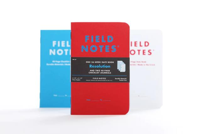 Where to find FIELD NOTES RESOLUTION in Albertville